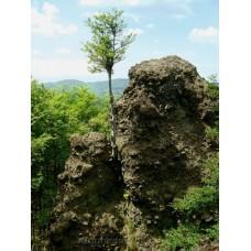 Katalin-szikla