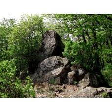 Newton-szikla