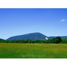 Pilis-hegy #2