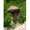 Gomba-szikla