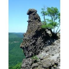 Vadálló-kövek sziklái